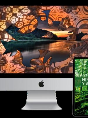 MEGA PACK: MEDITACIONES 3D + HIPNOTISMO & BIOENERGÍA (ebook)